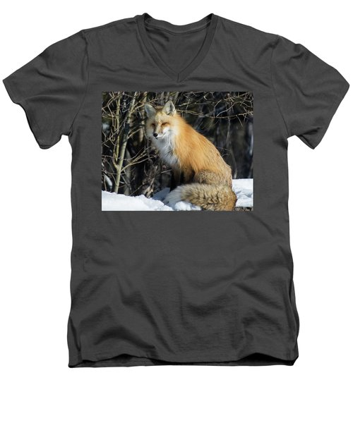 Crossroads With A Red Fox Men's V-Neck T-Shirt