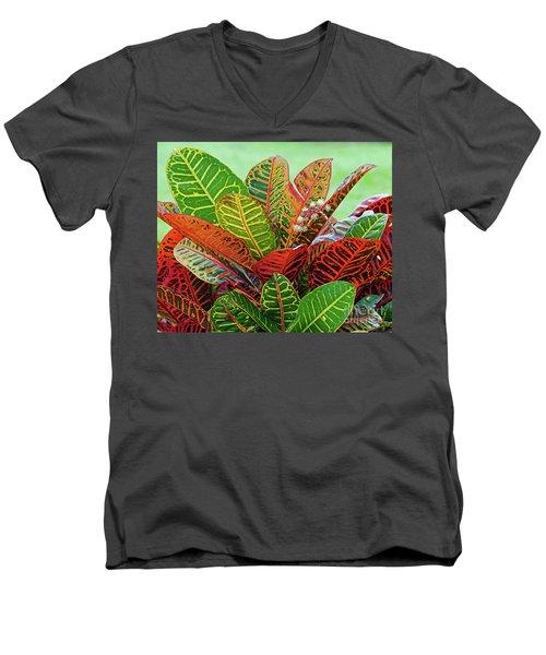 Colorful Croton Bloom Men's V-Neck T-Shirt