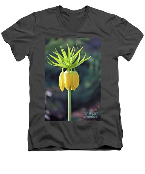 Crown Lily Men's V-Neck T-Shirt