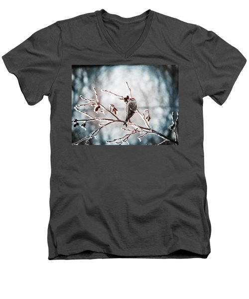 Men's V-Neck T-Shirt featuring the photograph Crystal Morning Joy by Zinvolle Art