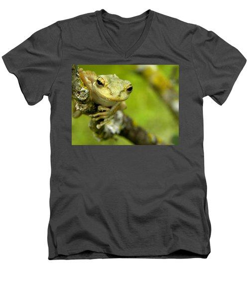 Cuban Tree Frog 000 Men's V-Neck T-Shirt by Chris Mercer