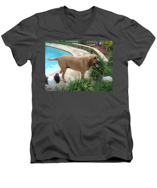Cujo And Lucky By The Pool Men's V-Neck T-Shirt by Val Oconnor
