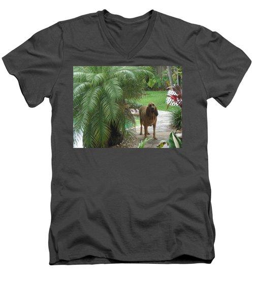 Cujo Hiding Men's V-Neck T-Shirt