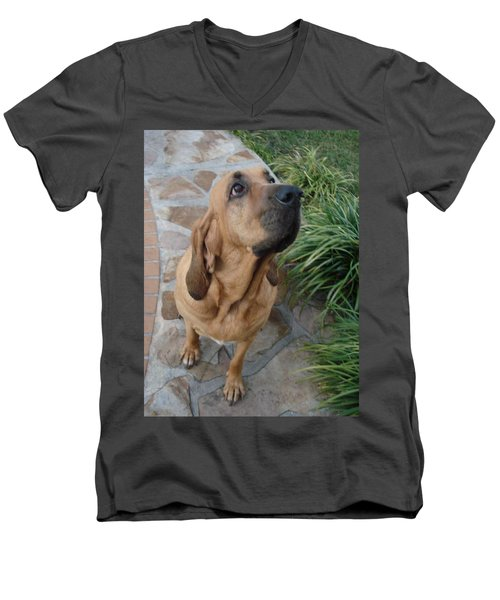 Cujo Looking At A Butterfly Men's V-Neck T-Shirt by Val Oconnor
