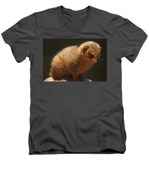 Men's V-Neck T-Shirt featuring the photograph Curiosity At Rest by Laddie Halupa