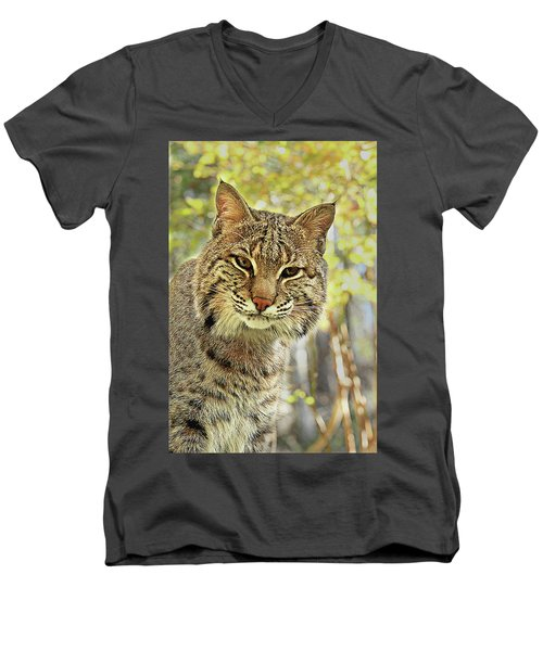 Men's V-Neck T-Shirt featuring the photograph Curiosity The Bobcat by Jessica Brawley