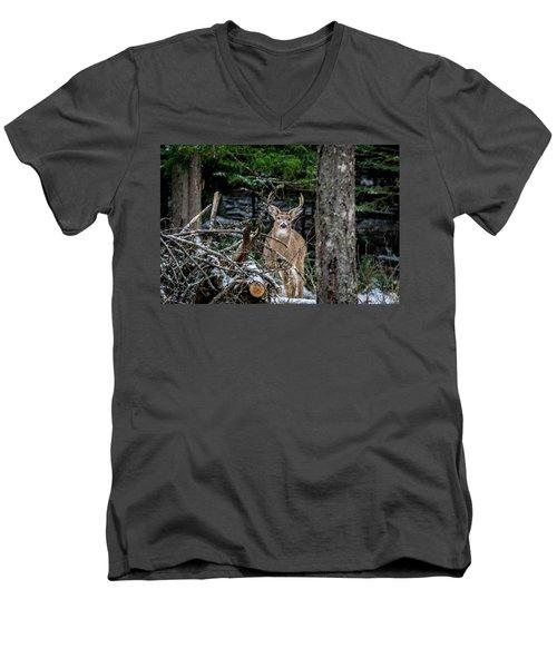 Curious Buck Men's V-Neck T-Shirt