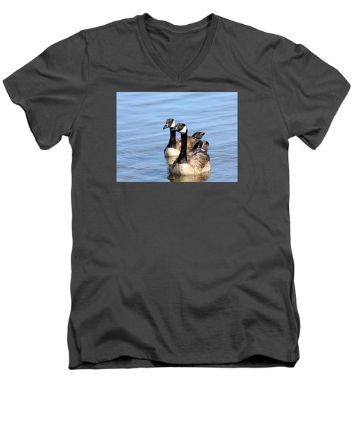 Men's V-Neck T-Shirt featuring the photograph Curious Canda Geese by Sheila Brown
