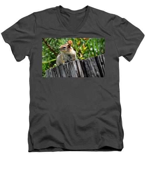 Curious Chipmunk Men's V-Neck T-Shirt by AJ Schibig