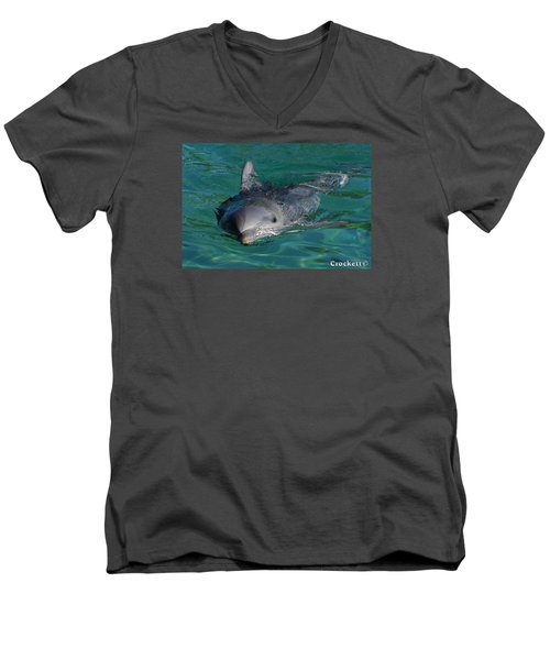 Men's V-Neck T-Shirt featuring the photograph Curious Dolphin by Gary Crockett