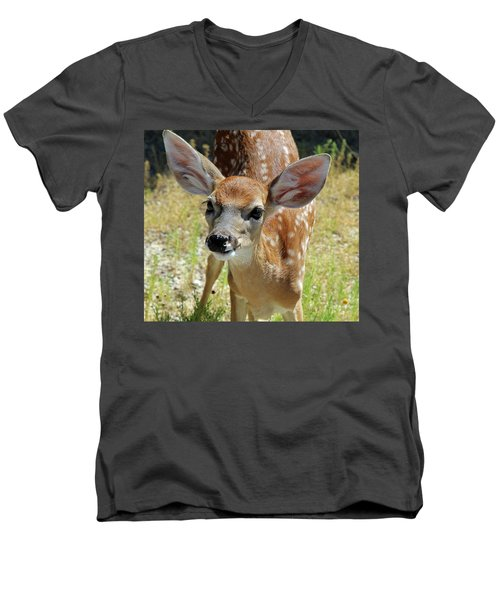 Curious Fawn Men's V-Neck T-Shirt by Inspirational Photo Creations Audrey Woods