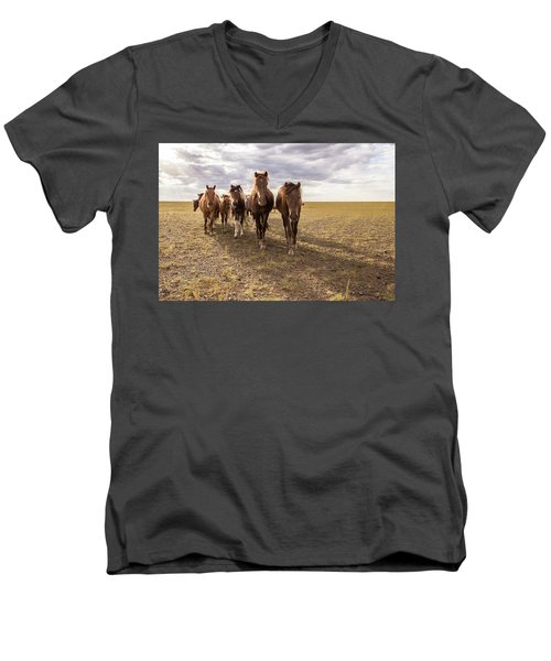 Men's V-Neck T-Shirt featuring the photograph Curious Horses by Hitendra SINKAR