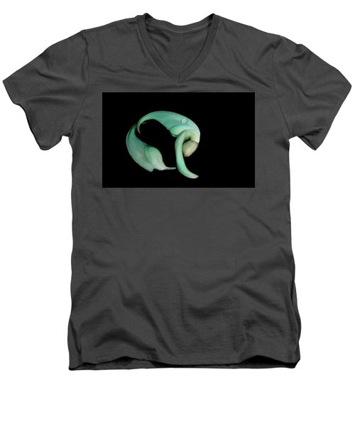 Curled Together Men's V-Neck T-Shirt