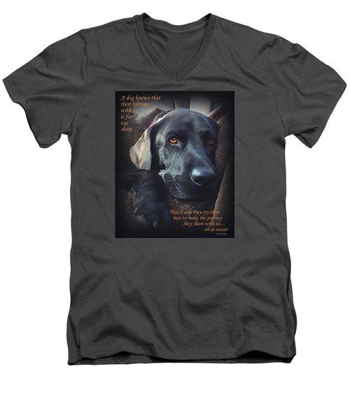 Custom Paw Print Midnight Oh So Sweet Men's V-Neck T-Shirt