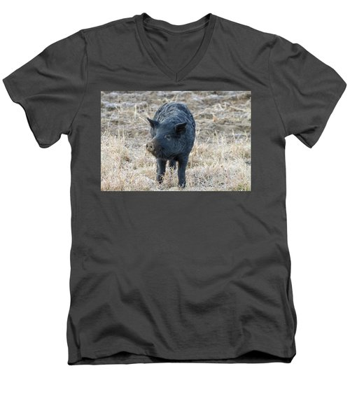 Men's V-Neck T-Shirt featuring the photograph Cute Black Pig by James BO Insogna