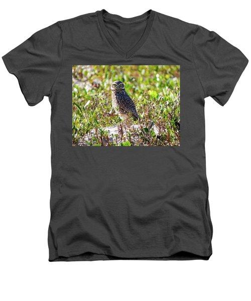 Cute Burrowing Owl Men's V-Neck T-Shirt