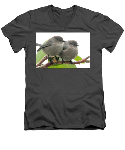 Cute Chicks Men's V-Neck T-Shirt