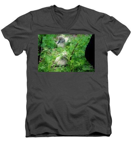 Cygnets V Men's V-Neck T-Shirt by Cassandra Buckley