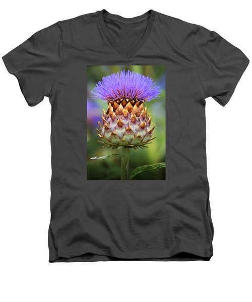 Cynara Cardunculus. Men's V-Neck T-Shirt