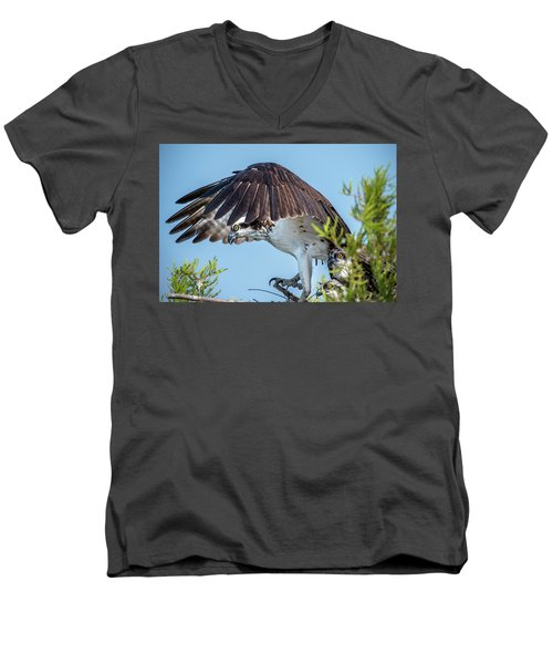 Daddy Osprey On Guard Men's V-Neck T-Shirt