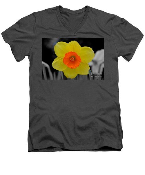 Daffodil Delight  Men's V-Neck T-Shirt