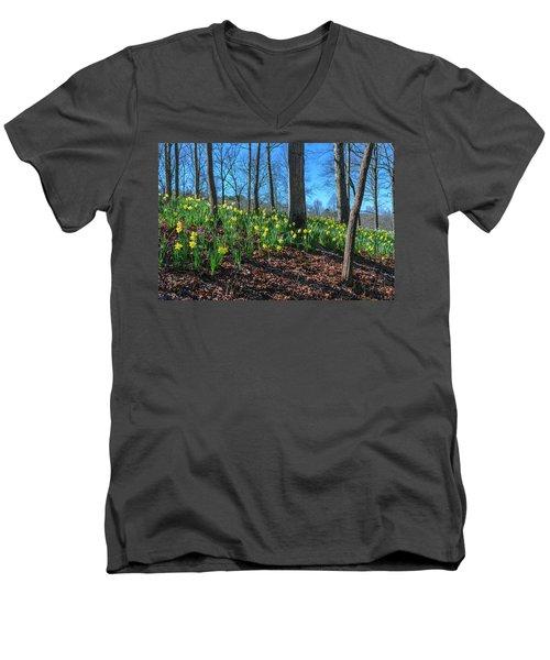 Daffodils On Hillside Men's V-Neck T-Shirt