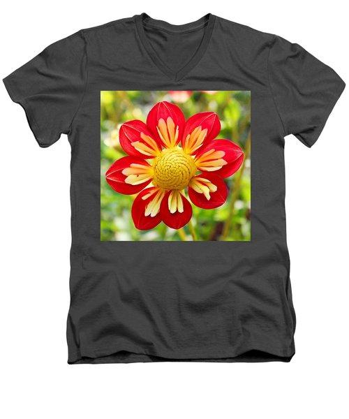 Dainty Dahlia Men's V-Neck T-Shirt