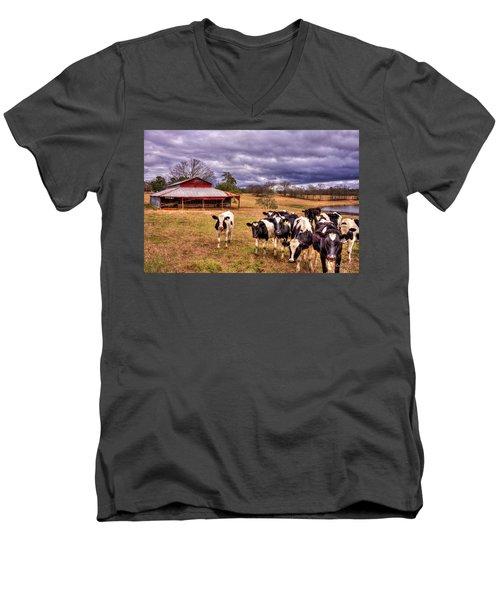 Dairy Heifer Groupies The Red Barn Art Men's V-Neck T-Shirt by Reid Callaway