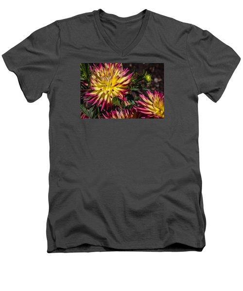 Dalhia Men's V-Neck T-Shirt