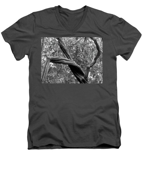 Dance Nature, Dance Men's V-Neck T-Shirt by Beto Machado
