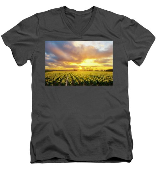 Dances With The Daffodils Men's V-Neck T-Shirt