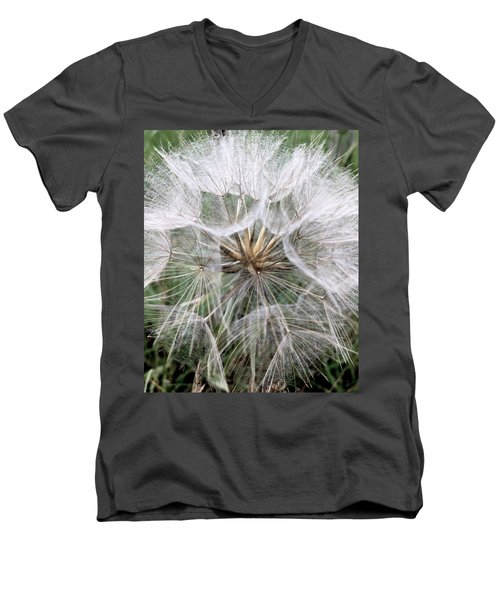 Dandelion Seed Head  Men's V-Neck T-Shirt by Kathy Spall
