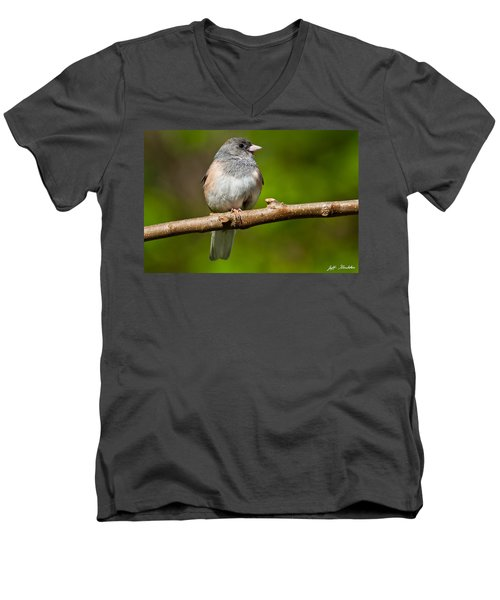 Dark Eyed Junco Perched On A Branch Men's V-Neck T-Shirt