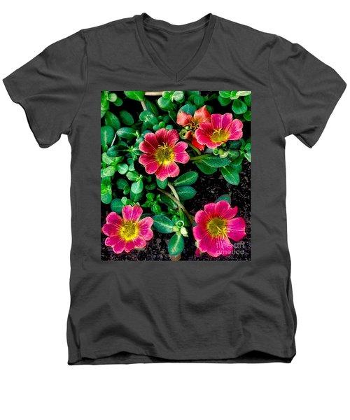 Dark Pink Purselane Flowers Men's V-Neck T-Shirt
