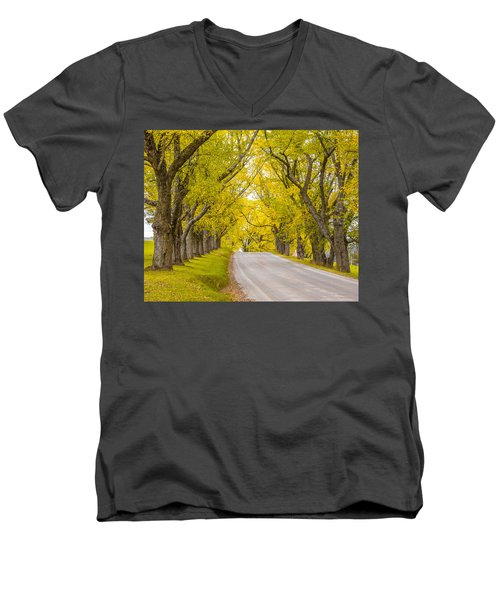 Darling Hill Autumn Men's V-Neck T-Shirt