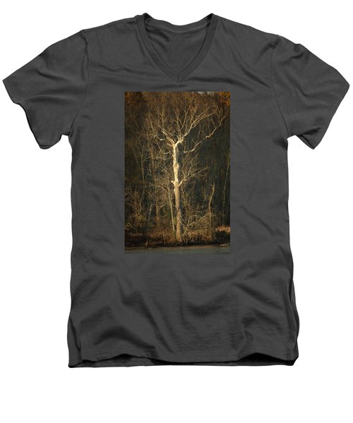 Day Break Tree Men's V-Neck T-Shirt