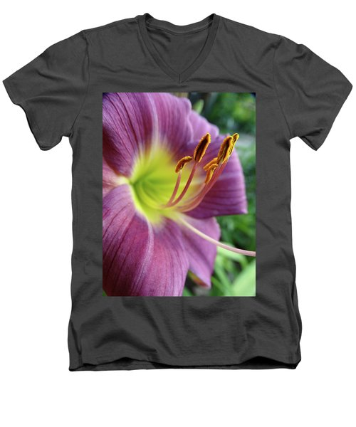 Daylilies In Summer Men's V-Neck T-Shirt by Rebecca Overton
