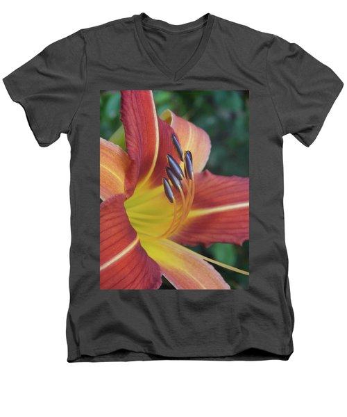 Daylilies Orange Men's V-Neck T-Shirt by Rebecca Overton