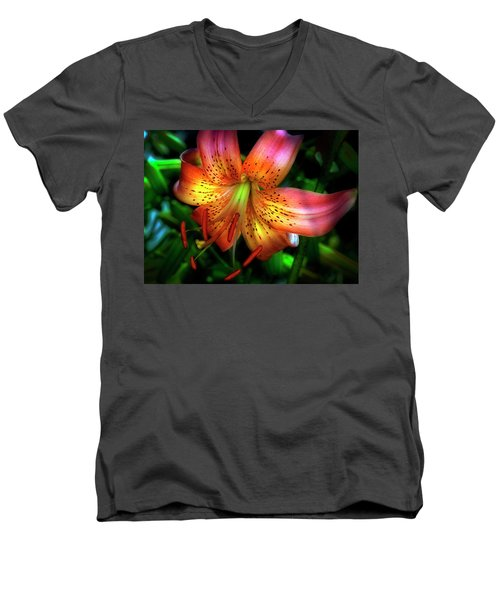 Dazzling Daylily  Men's V-Neck T-Shirt
