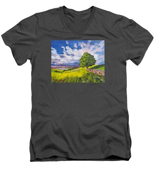Dazzling Sky Pallet Knife Men's V-Neck T-Shirt by Lisa Boyd