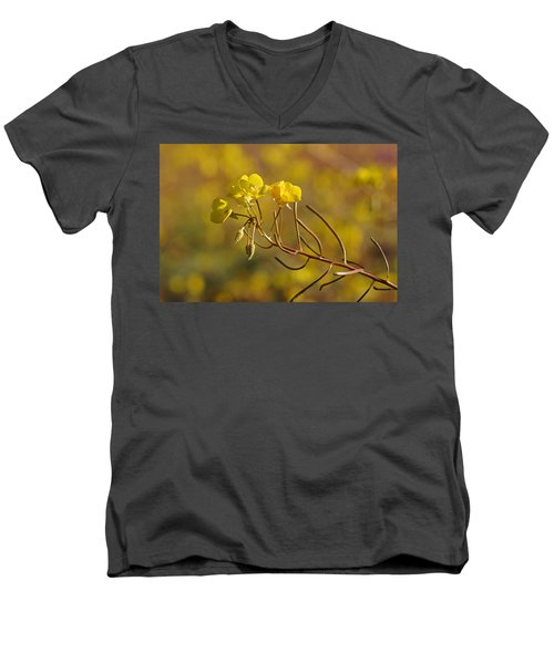 Death Valley Superbloom 301 Men's V-Neck T-Shirt