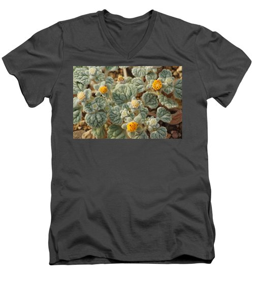 Death Valley Superbloom 302 Men's V-Neck T-Shirt by Daniel Woodrum