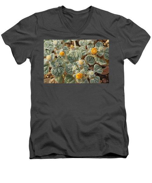 Death Valley Superbloom 302 Men's V-Neck T-Shirt