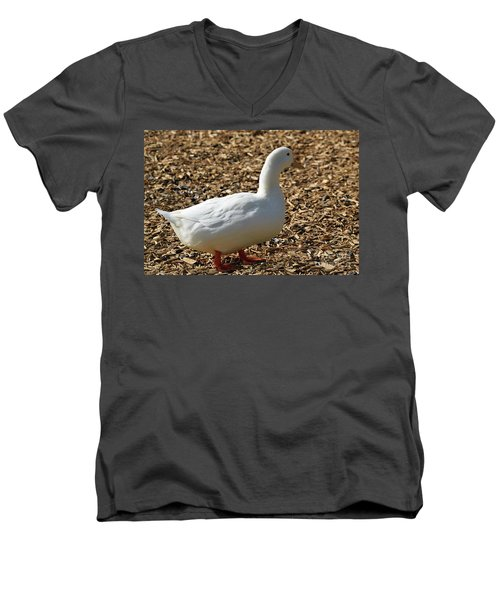Decorative Duck Series D5717 Men's V-Neck T-Shirt