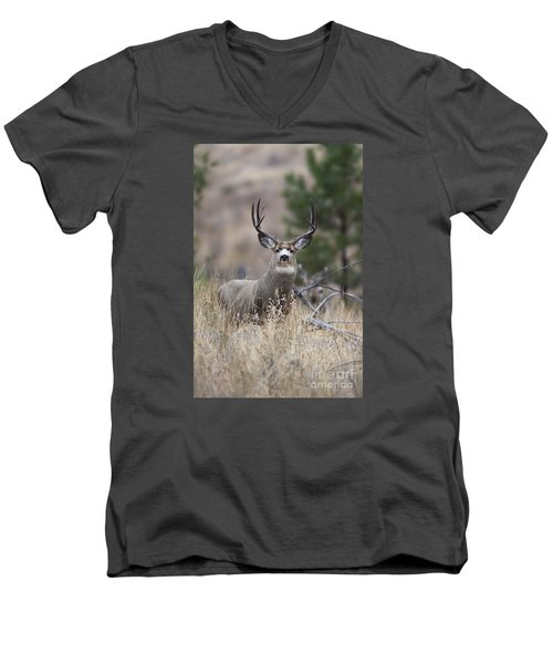 Deep Forest Men's V-Neck T-Shirt