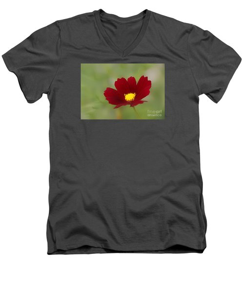 Deep In Red Men's V-Neck T-Shirt by Yumi Johnson