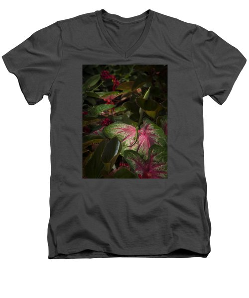 Deep Men's V-Neck T-Shirt