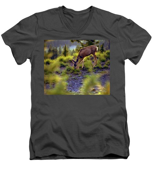 Men's V-Neck T-Shirt featuring the photograph Deer At Crater Lake, Oregon by John A Rodriguez