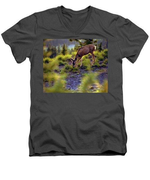 Deer At Crater Lake, Oregon Men's V-Neck T-Shirt
