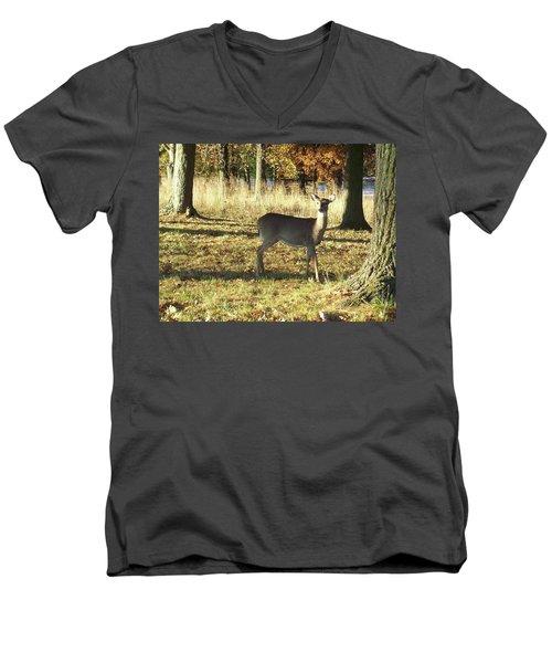 Deer At Valley Forge Men's V-Neck T-Shirt